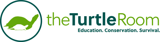 theTurtleRoom. Education. Conservation. Survival.