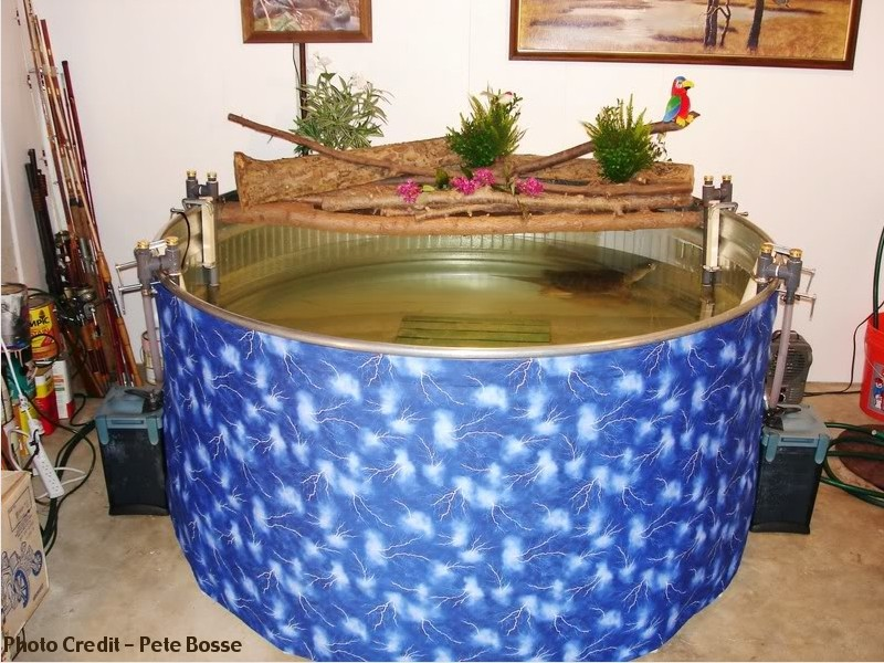turtle tank filter setup - Turtle Tank sump and Filter Set Up YouTube 2017 - Fish Tank Maintenance
