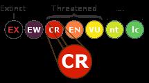 CR-Critically-Endangered