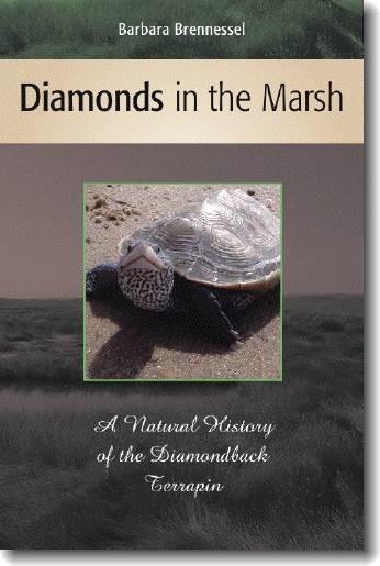 Diamonds in the Marsh - Barbara Brennessel