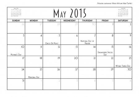 theTurtleRoom 2015 Turtle Calendar - May