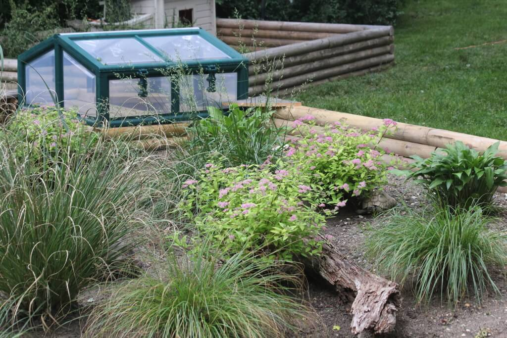 Building A Nest Box For Above Ground Ponds Theturtleroomtheturtleroom
