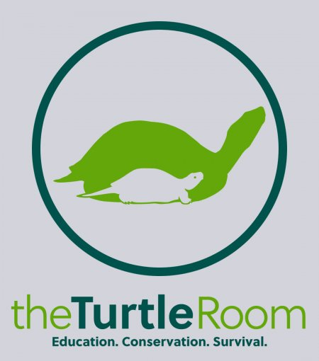 theTurtleRoom 2015 Logo T - Ash Gray
