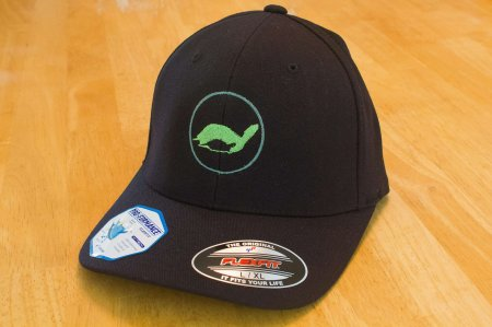 theTurtleRoom 2016P FlexFit Hat - Black