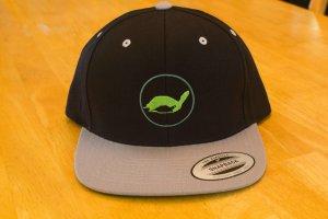 theTurtleRoom 2016 Snapback Hat - Black/Silver