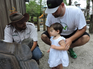 Anthony's daughter meeting a Galapagos Tortoise