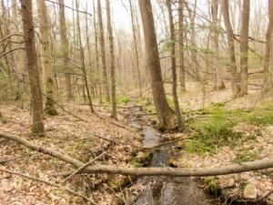Habitat in Lebanon County, PA
