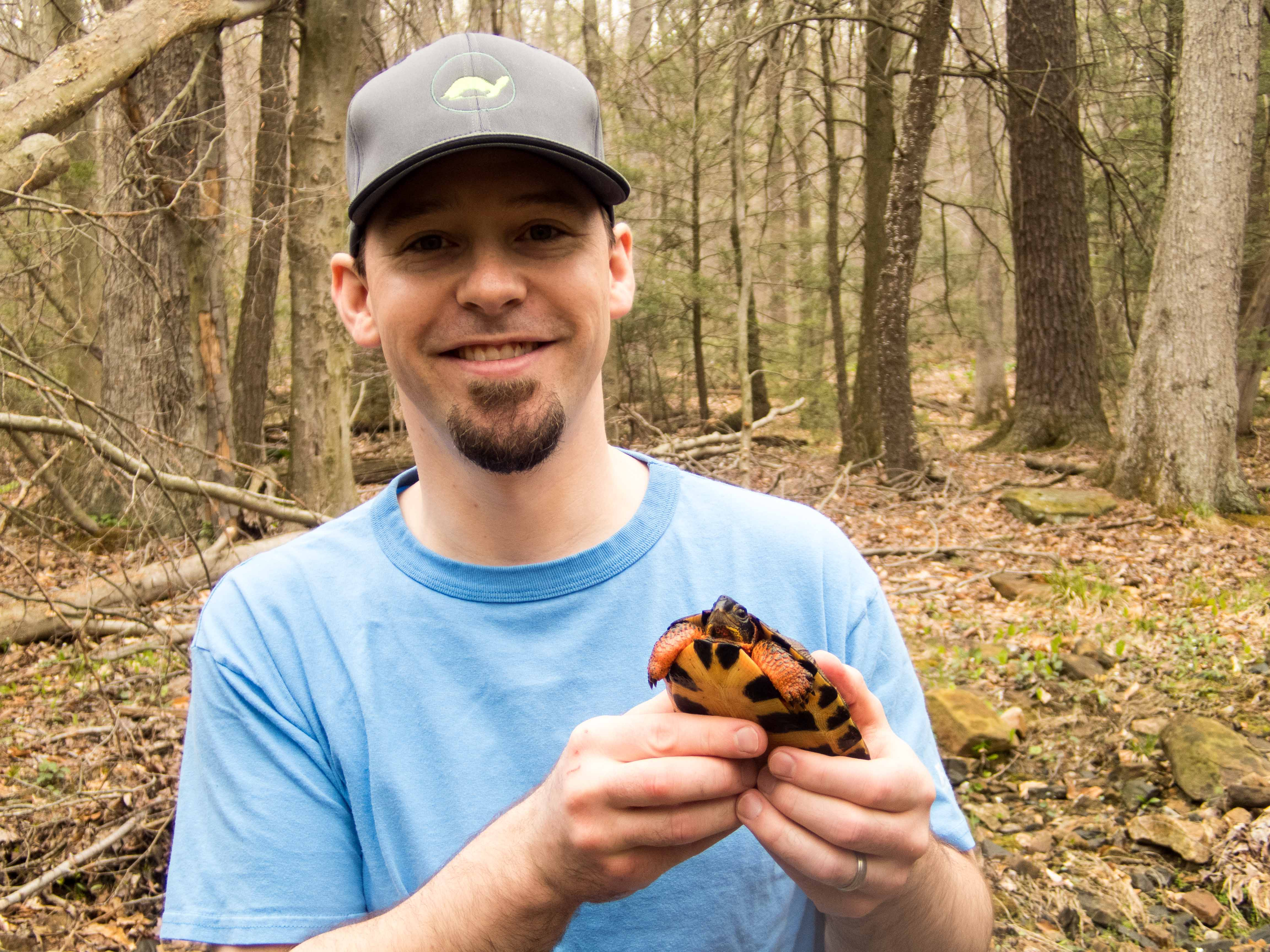 Steve Enders with a Sub-adult Glyptemys insculpta (Wood Turtle), Lebanon County, PA