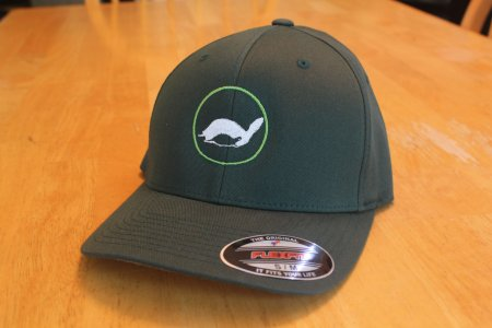 theTurtleRoom 2016F FlexFit Hat - Spruce