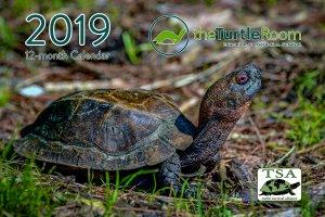 2019 theTurtleRoom Calendar Cover - Cuora mouhotii obsti