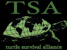 Turtle Survival Alliance, a partner of theTurtleRoom