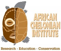 African Chelonian Institute, a partner of theTurtleRoom