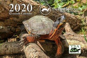 theTurtleRoom 2020 Turtle Calendar