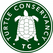 Turtle Conservancy, a partner of theTurtleRoom