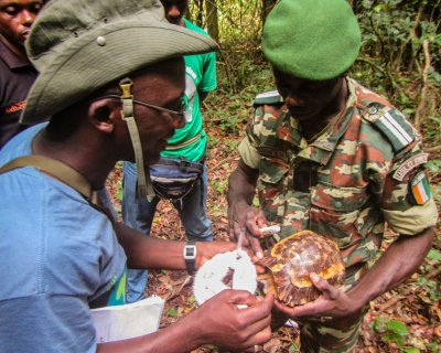 Rangers learn to collect data