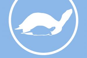 theTurtleRoom One-Color Logo Long-Sleeve T