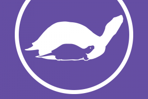 theTurtleRoom One-Color Logo T