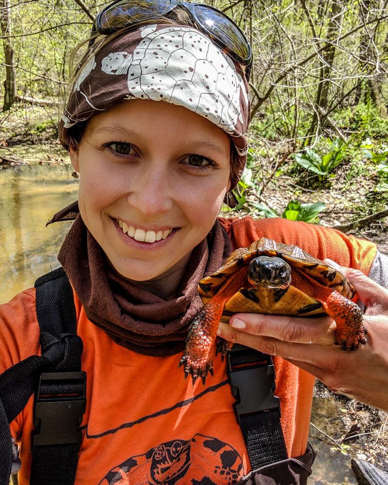 Miranda McCleaf holding an adult male wood turtle