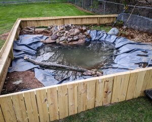The turtle pond partially completed.