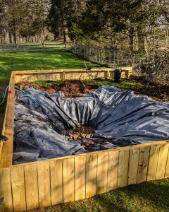 The turtle pond being filled.