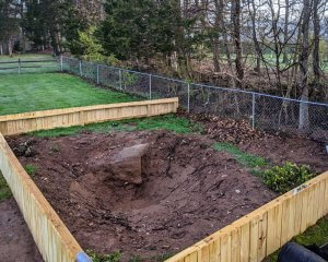 The big rock discovered whilst digging the turtle pond.