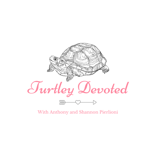 Turtley Devoted