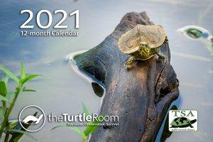 theTurtleRoom 2021 Turtle Calendar