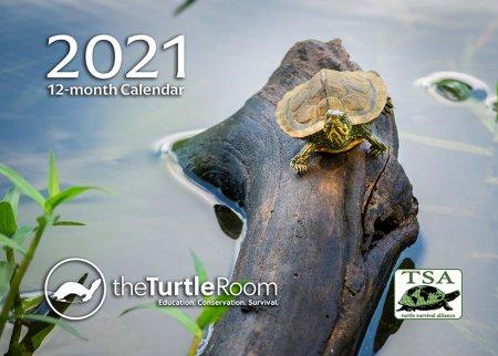 2021 theTurtleRoom Calendar Cover Image